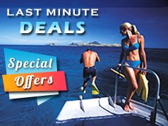 View our special offers and last minute deals