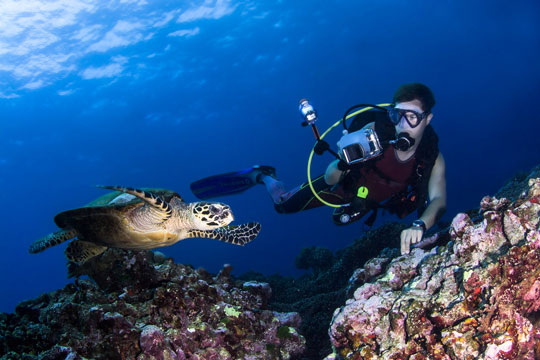 Thailand scuba diving all the best sites dive the world thailand - Where to dive in thailand ...