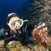 There is time to see Thai marine life during the Discover Scuba Diving course