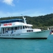 Dive day trips from Krabi
