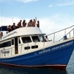 Dice day trips to the Similan Islands, Thailand