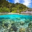 Coral reefs in Thailand where you doing your specialty courses