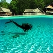 PADI Adventure Diver Course in Koh Phi Phi