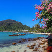 Tonsai Bay beach, Phi Phi Don