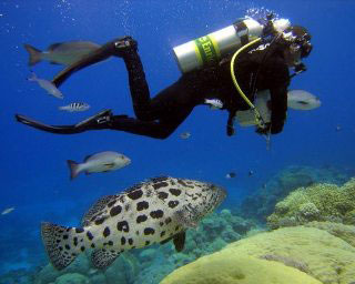 PADI Adventure Diver with Dive The World Thailand