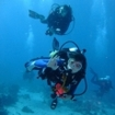 Diving in Thailand on your holiday