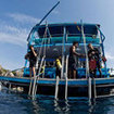 Diving remains a popular daytime activity from Koh Samui